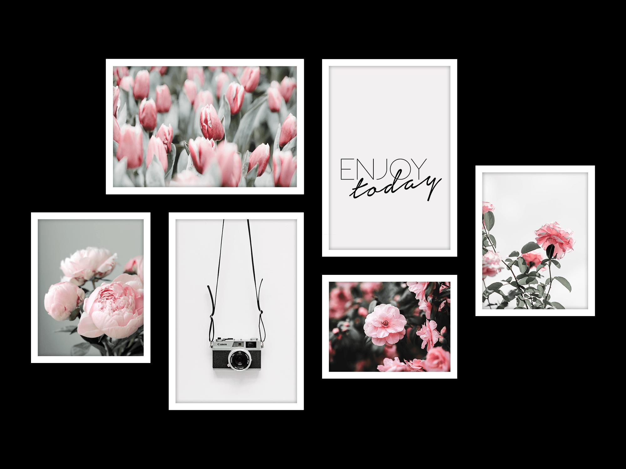 Bộ 6 tranh treo tường Winter Bloom Light pink