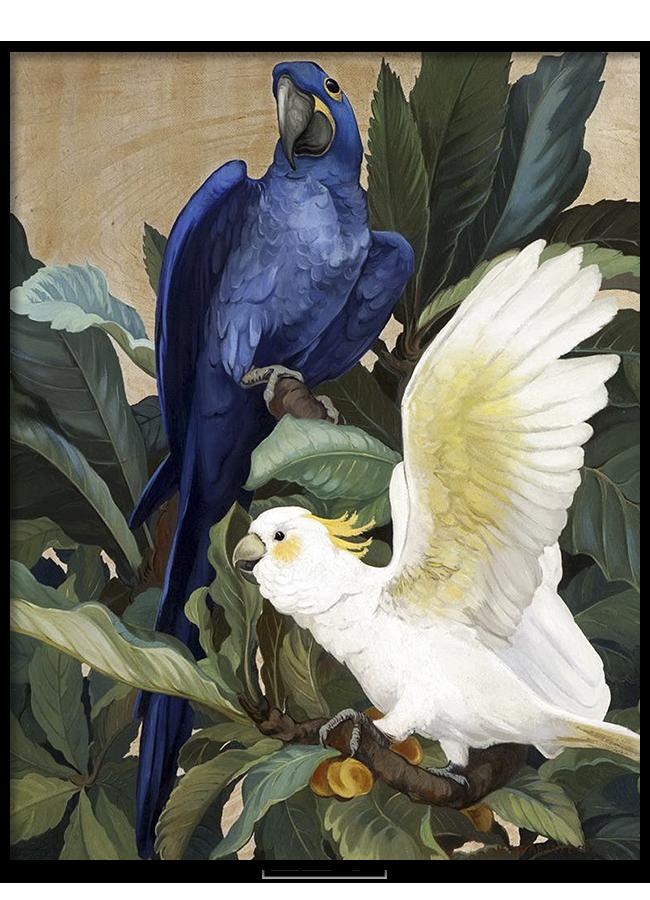 Tranh sơn dầu Blue parrot