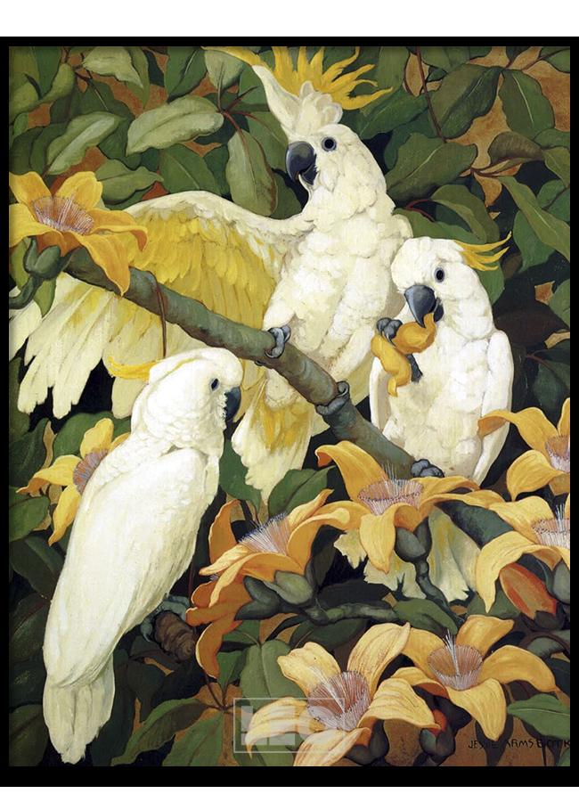Tranh sơn dầu Yellow Parrot No2