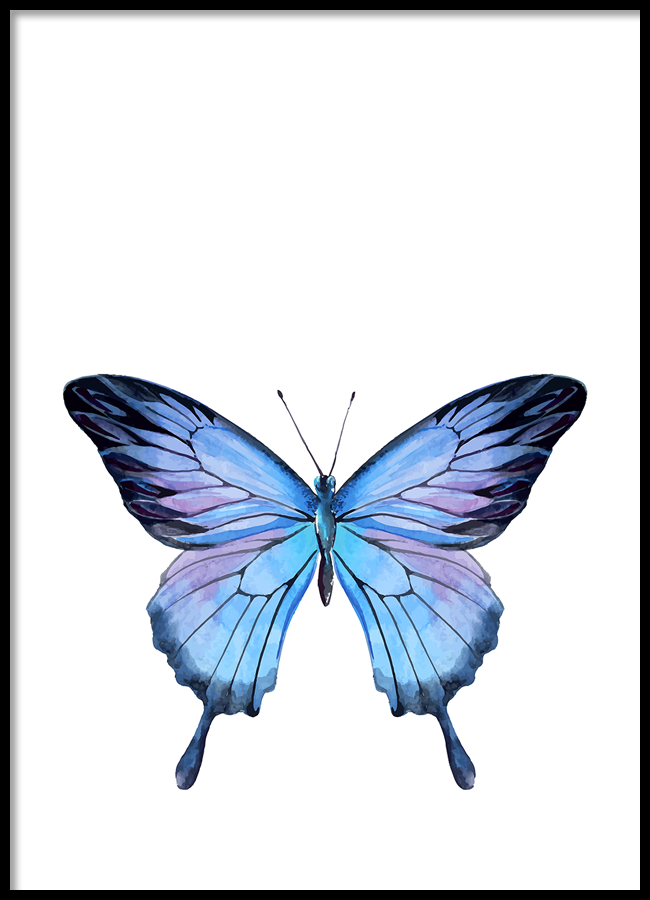 TRANH LẺ CANVAS BLUE BUTTERFLY