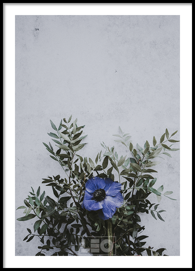 Tranh lẻ canvas Blue Dala