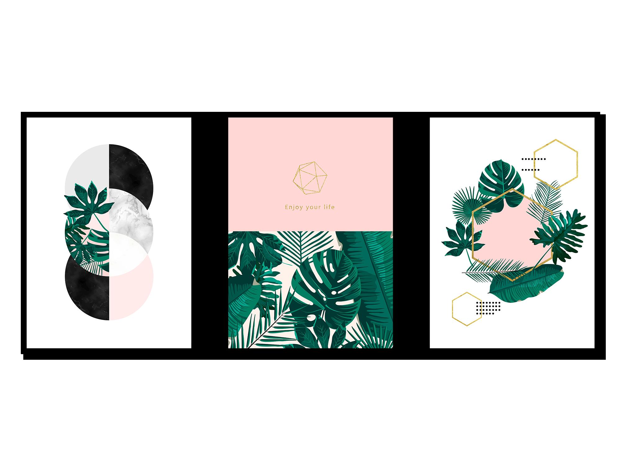 Bộ 3 tranh canvas Pink Green