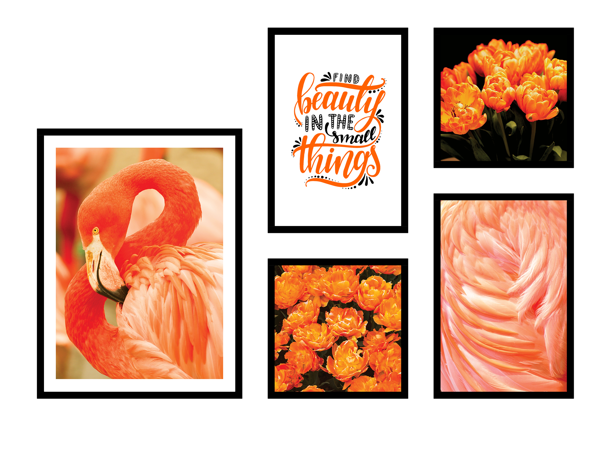 Set tranh canvas orange flamingo