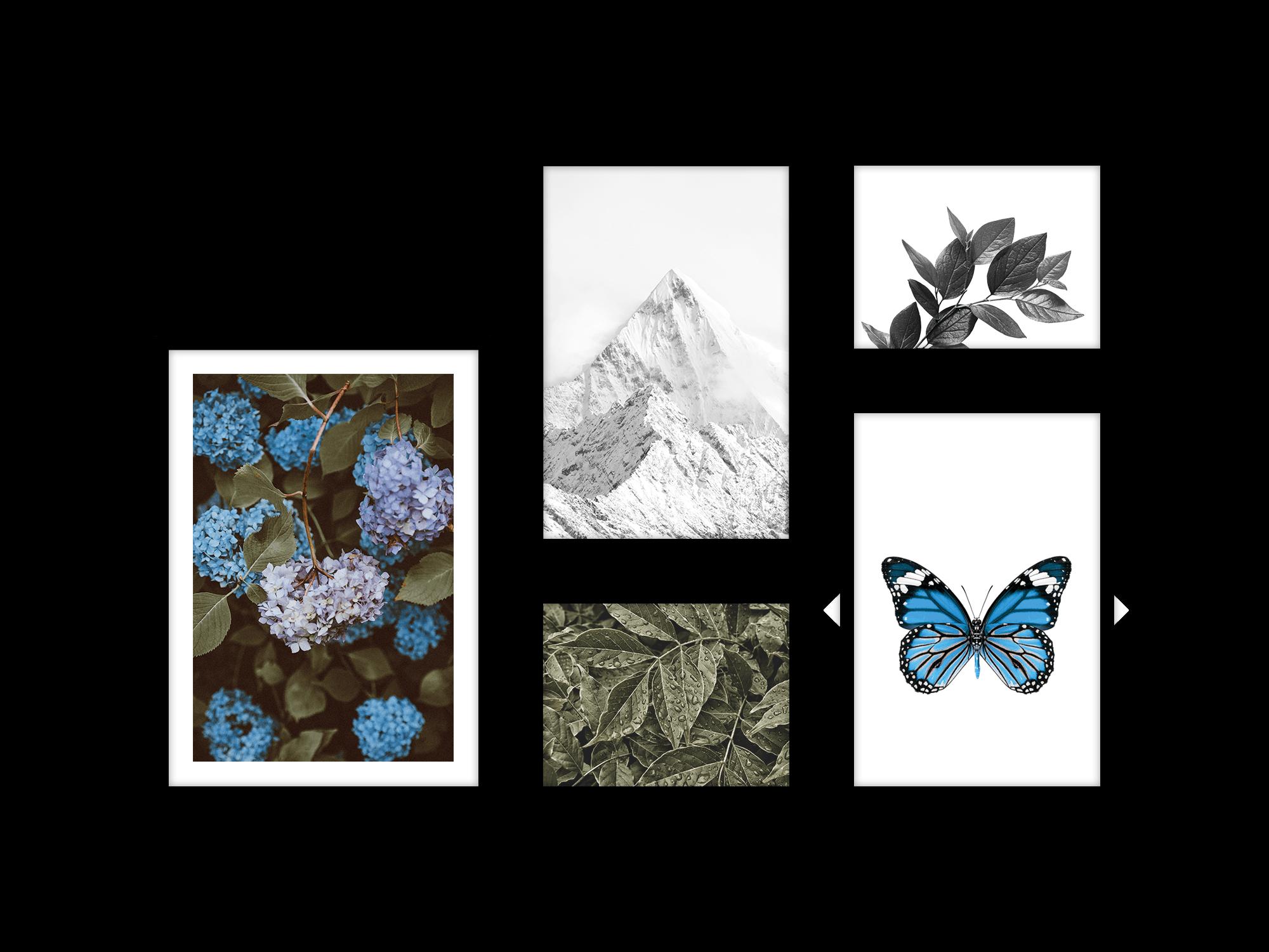 Bộ 5 tranh treo tường Winter Bloom Hydrangea